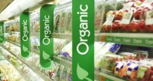 clasificacion-organica